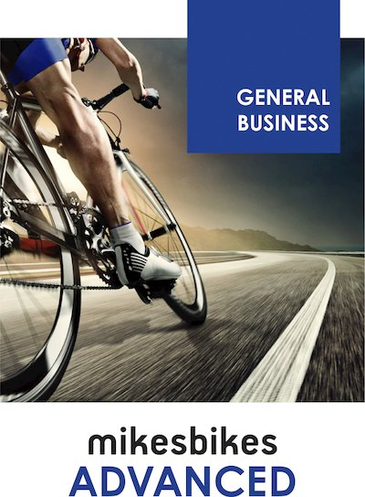 MikesBikes Advanced Business Simulation
