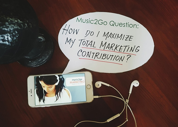 "Image displaying the question ""How do i maximize my total marketing contribution?"""