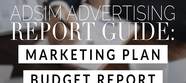 AdSim Marketing Plan Budget Report